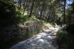 cala-figuera-10-leichte-wanderwege